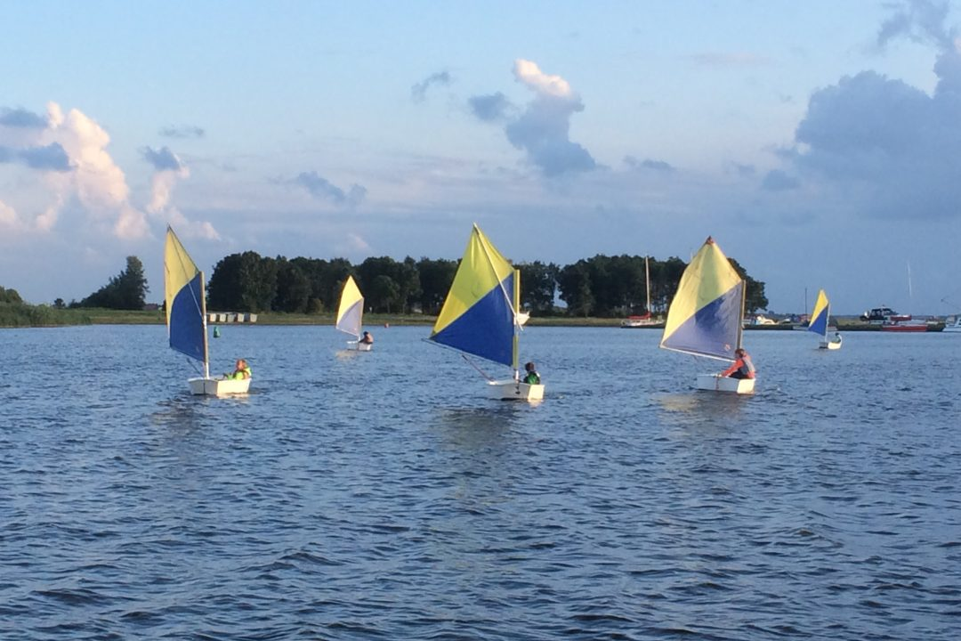 Optimist 4163