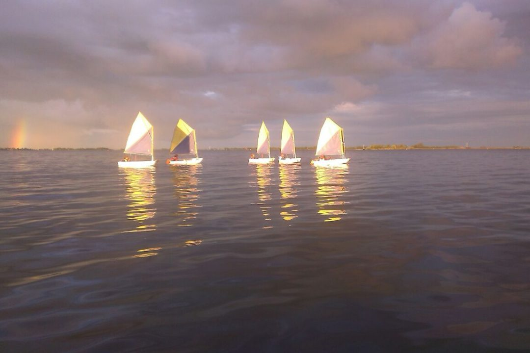 Optimist 4172