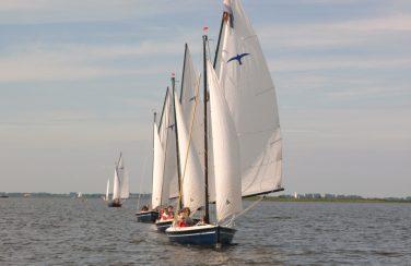 Valk zeilboot 3886