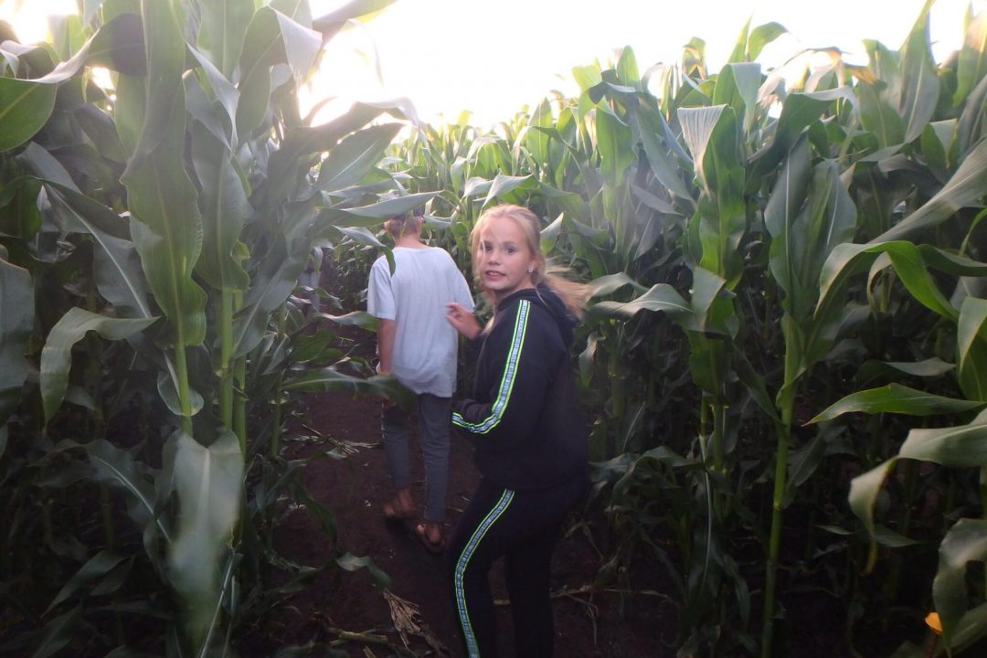 zeilkamp maisdoolhof avondprogramma